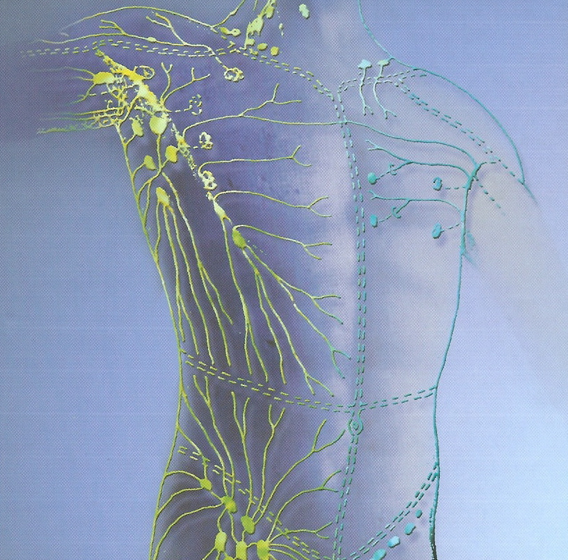 Refined Massage Therapy - Manual Lymphatic Drainage